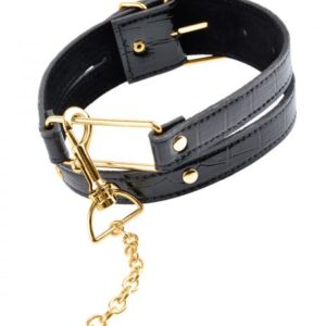 Fetish Fantasy Gold Collar and Leash